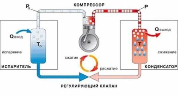 Как выбрать лучший холодильник стоимостью до 40 000 рублей