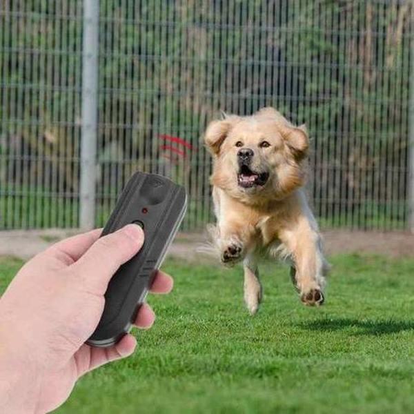 Лучший отпугиватель собак