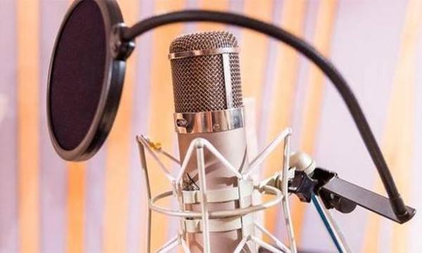 Рейтинг лучших микрофонов для камер