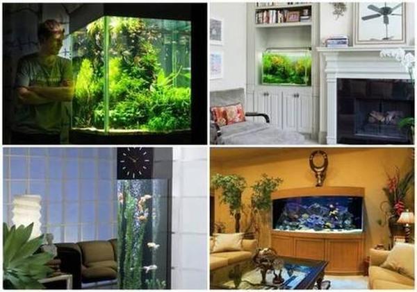 У меня живёт золотая рыбка: лучшие компрессоры для аэрации аквариумов