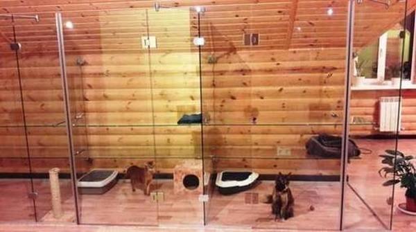 Лучшие гостиницы для животных в Уфе