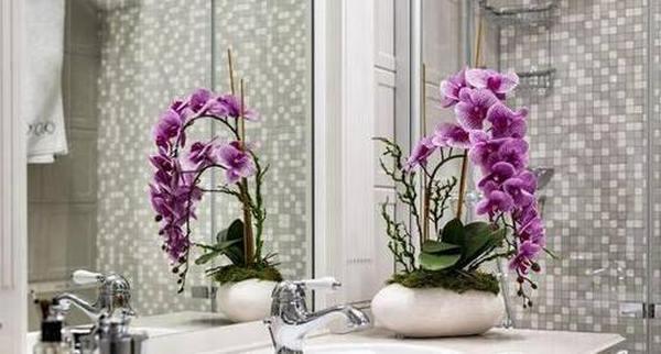 Улучшаем энергетику ванной комнаты: рейтинг популярных комнатных растений