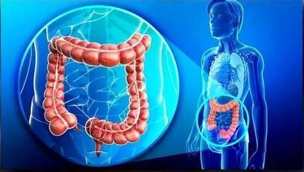 Лучший пробиотик для восстановления кишечной микрофлоры 2020