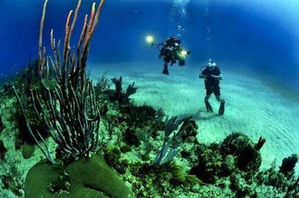 Рейтинг фонарей для подводной охоты и дайвинга