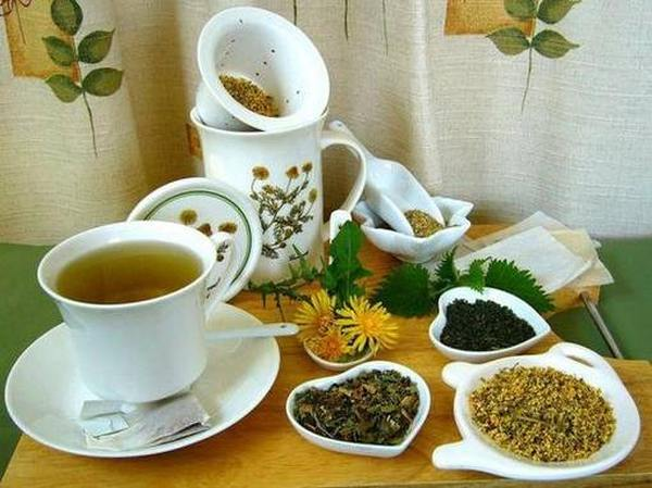 Лучшие виды травяных чаев ТОП 2020