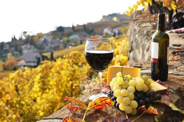 Рейтинг лучших вин Испании 2021